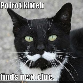 Poirot kitteh  finds next clue.