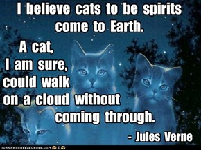Famous Cat quotes that deserve a capshun!.......