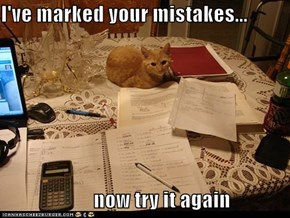 I've marked your mistakes...  now try it again