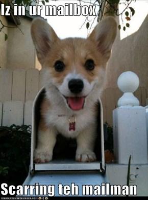 Iz in ur mailbox  Scarring teh mailman