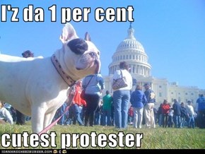 I'z da 1 per cent  cutest protester