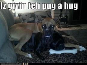 Iz givin teh pug a hug
