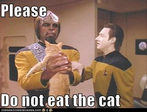 Please   Do not eat the cat