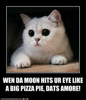 WEN DA MOON HITS UR EYE LIKE  A BIG PIZZA PIE, DATS AMORE!