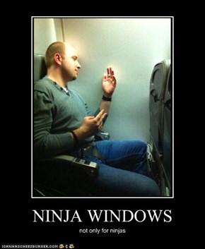 NINJA WINDOWS
