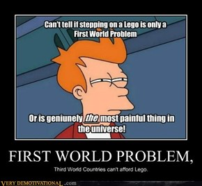 FIRST WORLD PROBLEM,