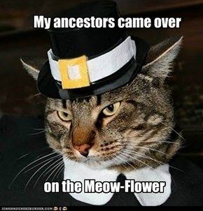 My ancestors came over