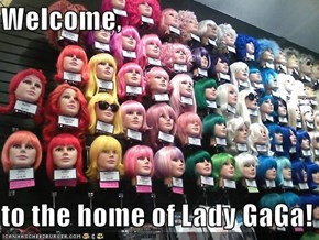 Welcome,  to the home of Lady GaGa!