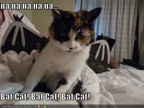 na na na na na...  Bat Cat! Bat Cat! Bat Cat!