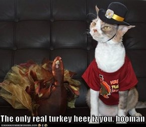 The only real turkey heer iz you, hooman