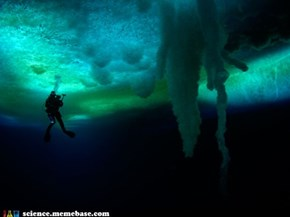 Antarctica: a Frozen Land of Wonders, So Cold That Icicles Form Underwater