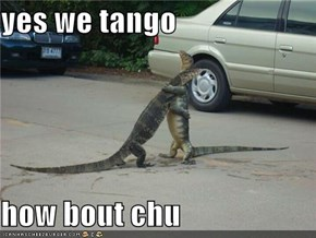 yes we tango  how bout chu