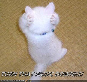 TURN THAT MUSIC DOWN!!1!