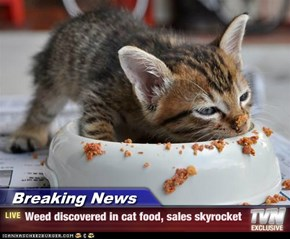 Breaking News - Weed discovered in cat food, sales skyrocket