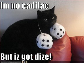 Im no cadilac   But iz got dize!
