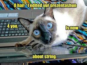 Never teach the cat PowerPoint.