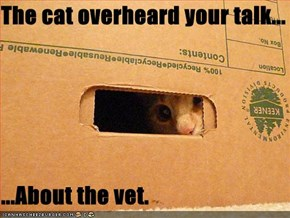 The cat overheard your talk...  ...About the vet.