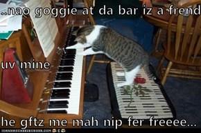 ..nao goggie at da bar iz a frend uv mine he gftz me mah nip fer freeee...