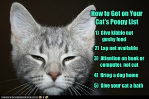 How to get on your cat's poopy list