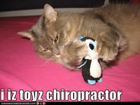 i iz toyz chiropractor