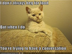 I don't always beg for food But when I do You're trying to have a conversation