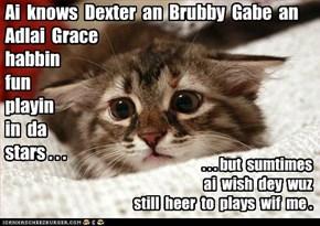 Thinkin ob Dexter an frends