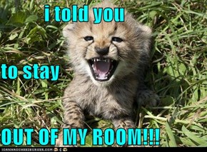 i told you  to stay OUT OF MY ROOM!!!