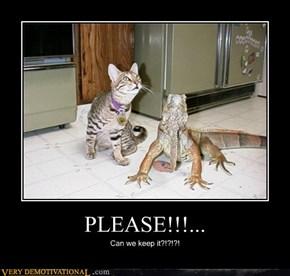 PLEASE!!!...