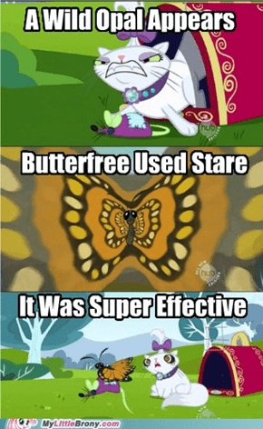 I Choose You, Butterfree!