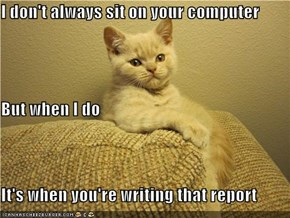 I don't always sit on your computer But when I do It's when you're writing that report