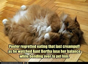 Poofer regretted eating that last creampuff as he watched Aunt Bertha lose her balance while bending over to pet him.
