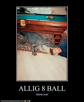ALLIG 8 BALL