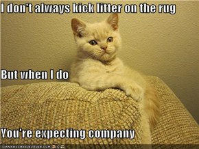 I don't always kick litter on the rug But when I do You're expecting company