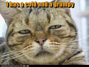 I has a cold and a grumpy