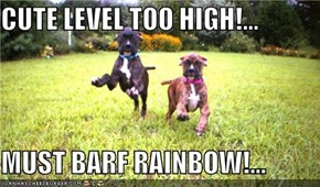 CUTE LEVEL TOO HIGH!...  MUST BARF RAINBOW!...