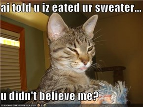 ai told u iz eated ur sweater...  u didn't believe me?