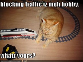 blocking traffic iz meh hobby.  whatz yours?