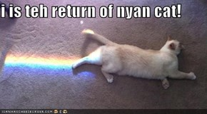 i is teh return of nyan cat!