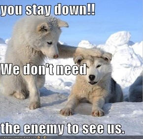 you stay down!!  We don't need  the enemy to see us.
