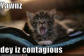 Yawnz  dey iz contagious