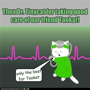 Thnx Dr. Tinycat for taking good care of our friend Tookat!