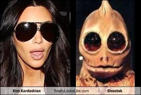 Kim Kardashian Totally Looks Like Sleestak