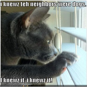 i knewz teh neighbors were dogs.  I knewz it, i knewz it!
