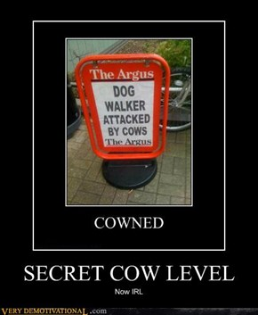 SECRET COW LEVEL