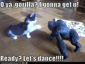 O ya, gorilla? I gonna get u!  Ready? Let's dance!!!!
