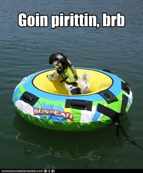 Call me Cap'n Pupp