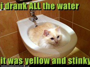 i drank ALL the water  it was yellow and stinky