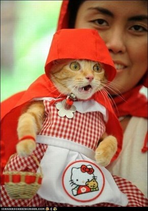 Cyoot Kitteh of teh Day: Kitteh Red Riding Hood