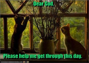 Dear God,  Please help me get through this day.