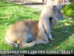 I'm gonna rides you like a pony.  Okay?